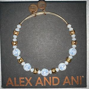 Alex and Ani Swarovski Beaded Bangle